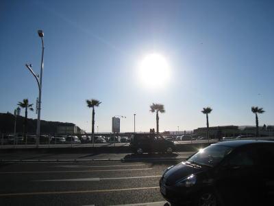 20090126yoko7