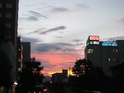 20090316_suichi.jpg