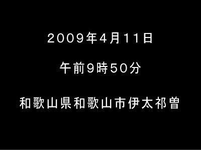 20090411waka00.jpg