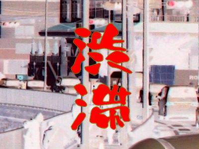 20090411waka19.jpg