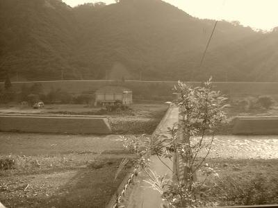 20090606tokuyama02.jpg