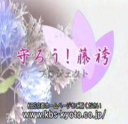20090611dou_kbs2.jpg