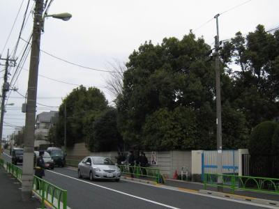 20100328_26.jpg