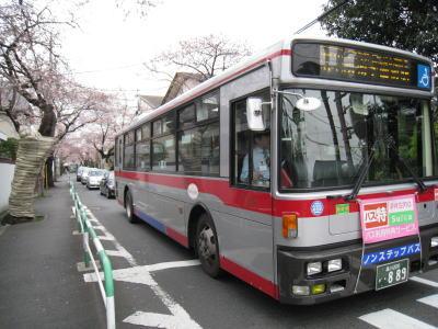 20100328_29.jpg