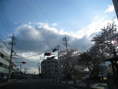 2010040709.jpg