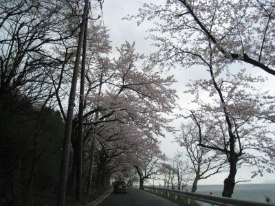 20100413_03.jpg