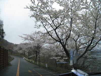 20100413_19.jpg